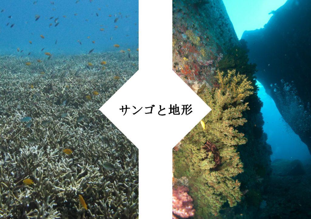 ラチャノイ島、サンゴと地形と!